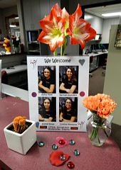 Orange cactus and carnations Welcome Alexa, Rachael, Krystle and Cindii!