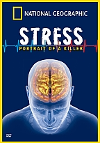 Stress can fry your brain!  Don't doubt it!