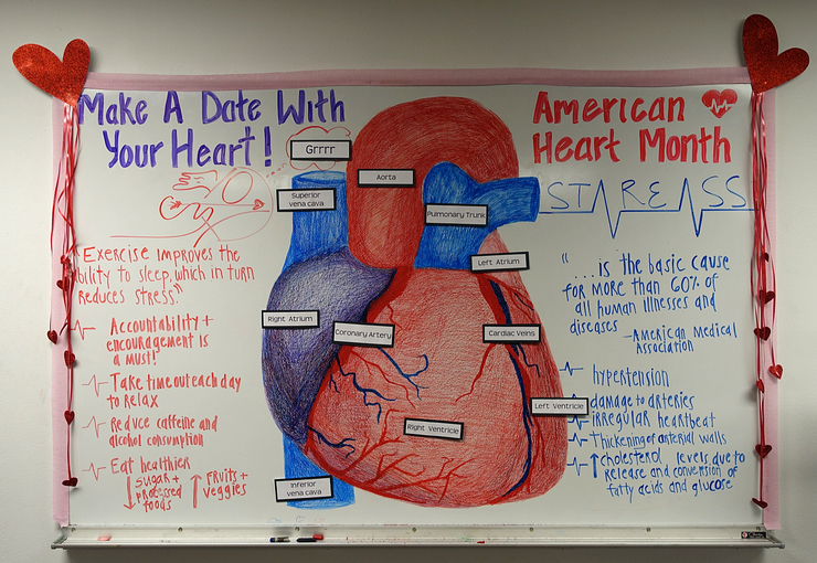 This was a Great February American Heart Month White Board by Sierra and Eli!