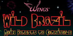 Wings, Helping Breast Cancer patients and their families